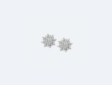 Silver Star Earrings img